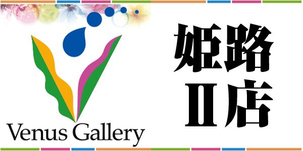 Venus Gallery 姫路Ⅱ店