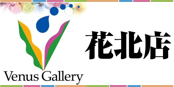Venus Gallery 花北店
